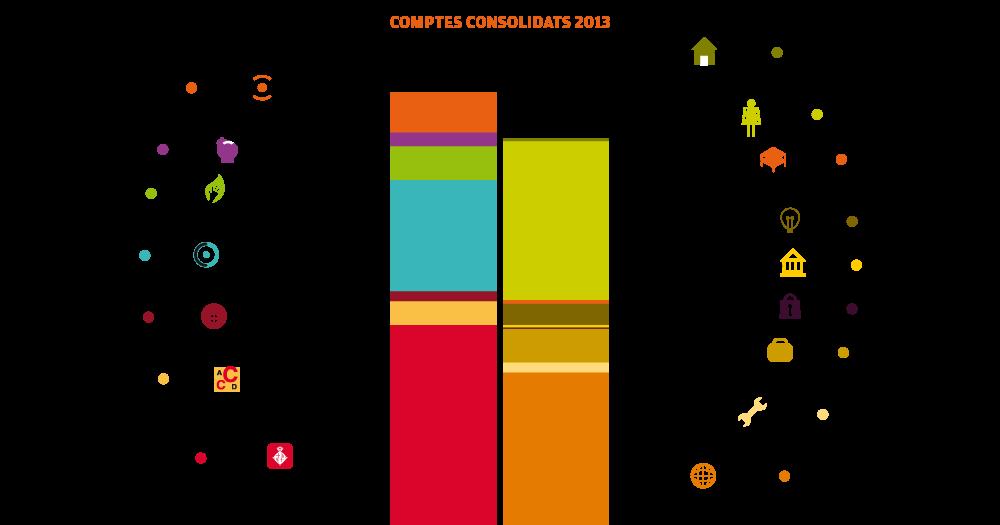 Comptes consolidats 2013